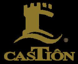 castion logo