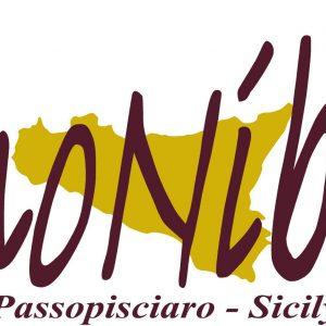 vino nibali logo